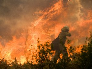 A firefighter confronts a wall of flames