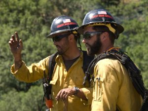 Firefighters in the woods conversing