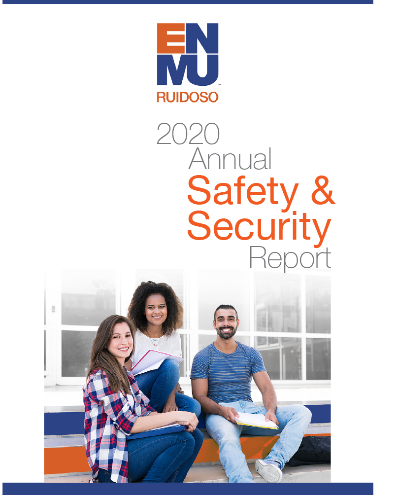 2020 Safety & Security Report cover image